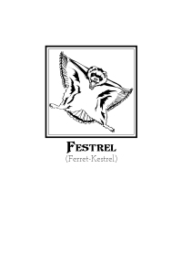 Illustration, Festrel
